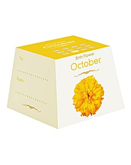 Birth Flowers October
