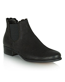 Daniel Delicate Chelsea Boot