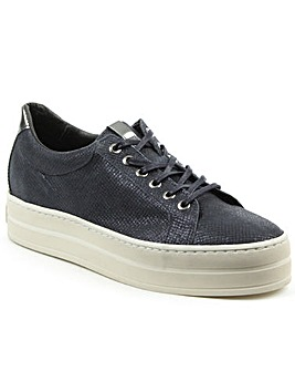 Daniel Suri Navy Leather Trainer