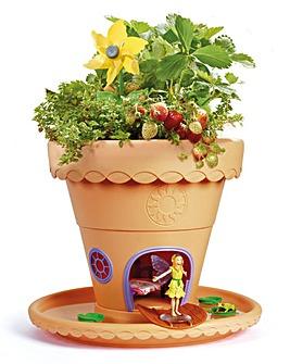 My Fairy Garden - Lilypad Gardens