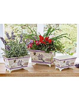 Flower Pots Set of 3