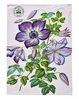 Kew Gardens Clematis Tea Towel