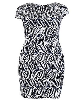 Samya Wave Print Skater Dress