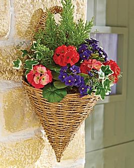 Geranium Wall Basket
