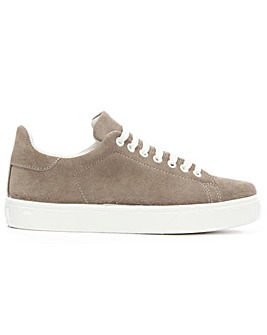 Daniel Blasket Taupe Lace Up Trainer