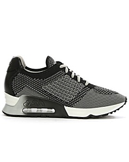 Ash Black Knit Trainer