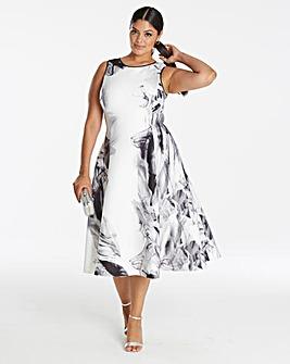 Coast Grove Print Fit and Flare Dress