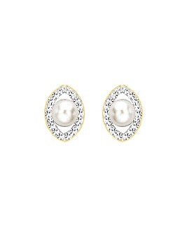 9ct Gold and Pearl Elliptic Studs