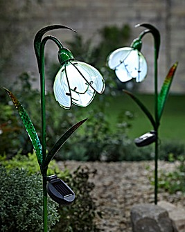Smart Garden Pack of 2 Solar Snowdrops