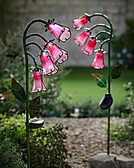 Smart Garden Pack of 2 Solar Foxgloves