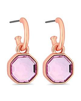 Jon Richard Swarovski Hexagon Earring