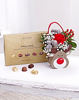 Rudolph Gift Bag and Chocolates Set