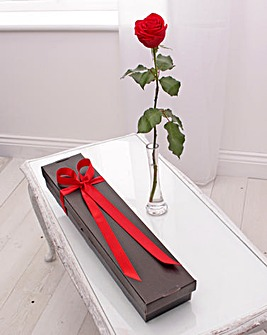 Single Red Rose Gift Box