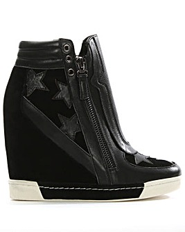 Daniel Perfo Star Suede Wedge Trainer