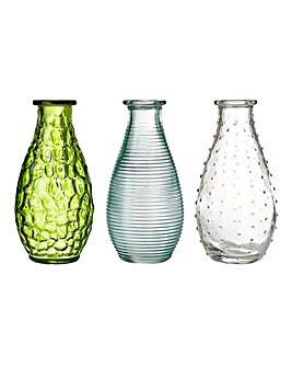 Botanical Set of 3 Vases
