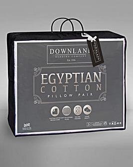 Egyptian Cotton Pillows