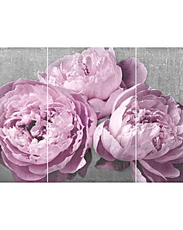 Arthouse Moorland Peonies Triptych
