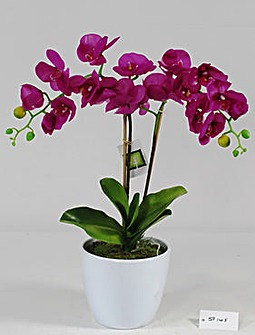 Artificial Plant Potted Orchid