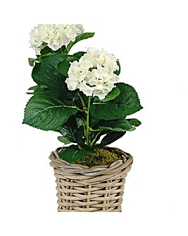 Artificial Plant Hydrangea In Rattan