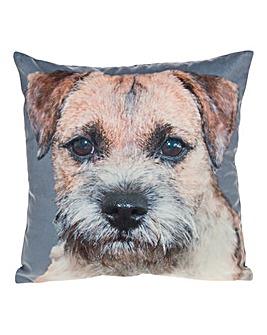 Border Terrier Photo Cushion
