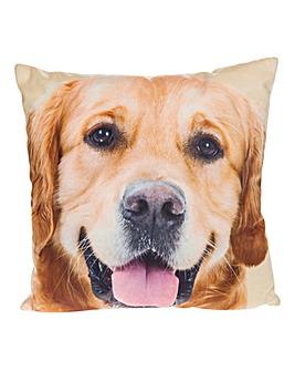 Golden Labrador Photo Cushion