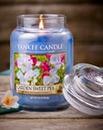 Yankee Garden Sweet Pea Large Jar Candle
