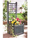Trellis Planters Set of 2 Narrow