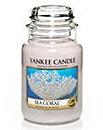 Yankee Candle Treasures Sea Coral Large