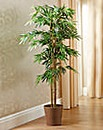 Faux Bamboo Tree 5ft