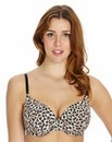2 PackPlunge Wired Animal Print Bra