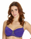Balcony Wired Purple Bra