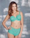 Daisy Lace Full Cup Wired Mint Bra