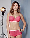 2 Pack Stretch Lace Cobalt/Pink Bras