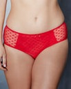 Black/Red TwoPack Heart Mesh Midi Briefs