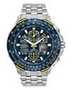Citizen Eco-Drive Blue Angels Watch