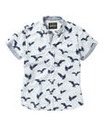 Joe Browns Free As A Bird Shirt Long