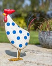 Spotty Rooster