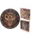 Big Eyed Owl Design Wall Clock