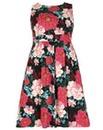 Samya Sleeveless Floral Print Dress