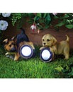 Puppy Solar Light