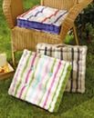 Striped Cushions Pack of 2