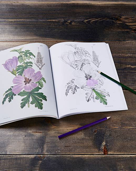 The Kew Gardens Colouring Book