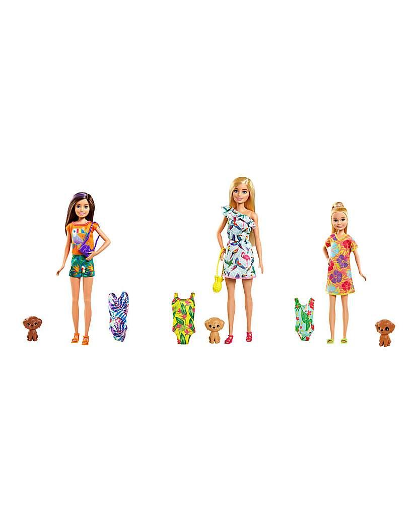 Barbie Birthday Surprise Sister & Pet