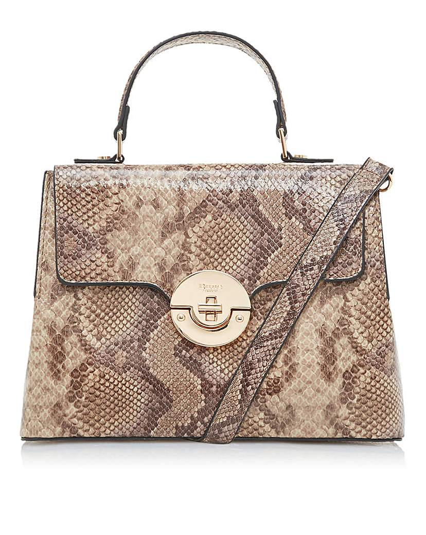 24566761921 Dune Dinidoting Snake Grab Bag