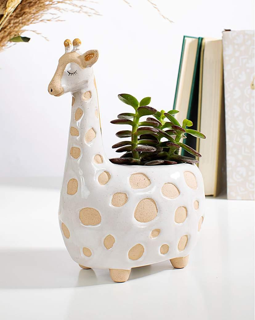Sass & Belle Gina Giraffe Planter