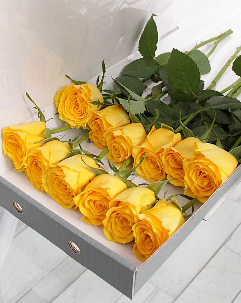 Image of 12 Yellow Letter Box Roses