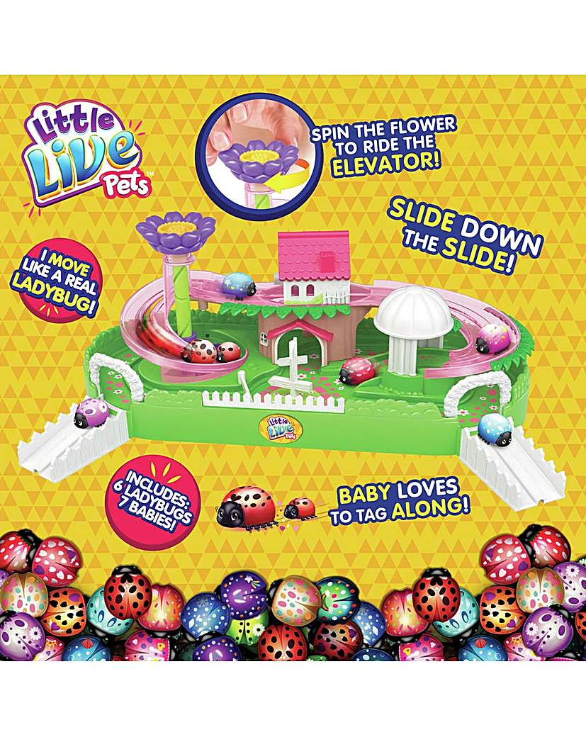 Image of Little Live Pets Ladybug Special Set