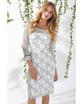 Gina Bacconi Misty Embroidery Dress