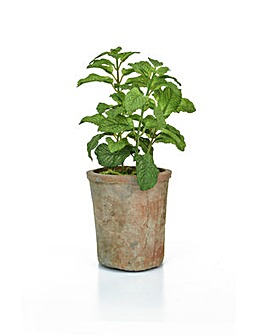 Artificial Potted Green Mint