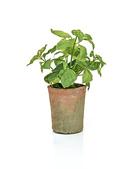 Artificial Potted Green Basil
